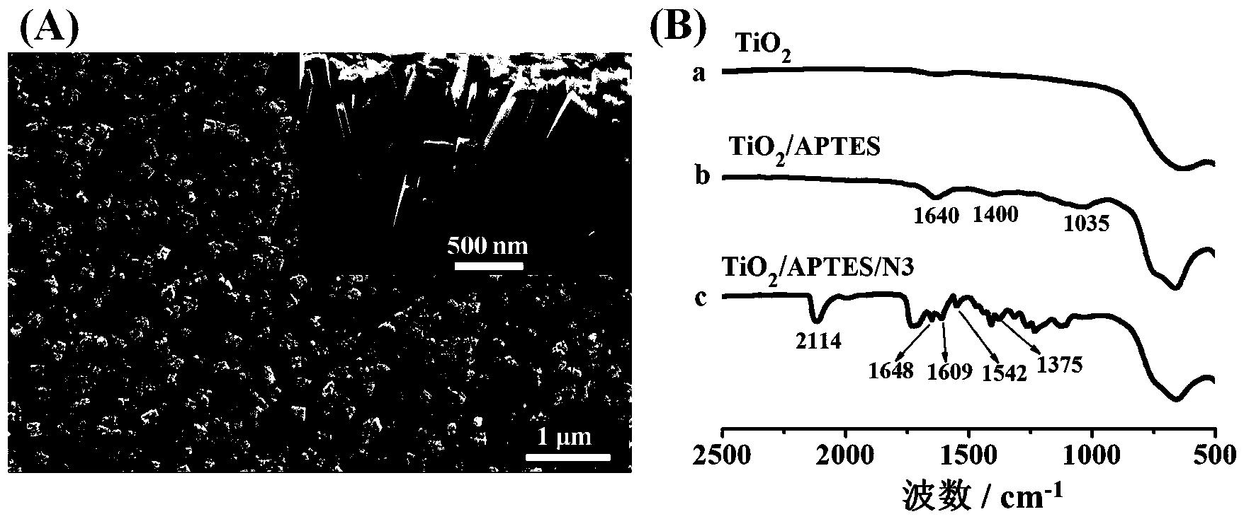 汞离子光电化学传感器工作电极及其制备方法和应用